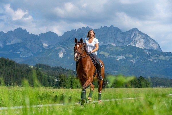 Pferde-Fotografie in Oberndorf